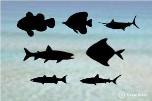 Fish dxf files preview