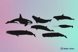 Whales dxf files preview